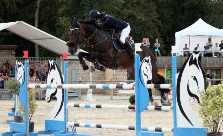 Vous souhaitez sortir en amateur mais n'avez pas votre cheval ? Solution ici !